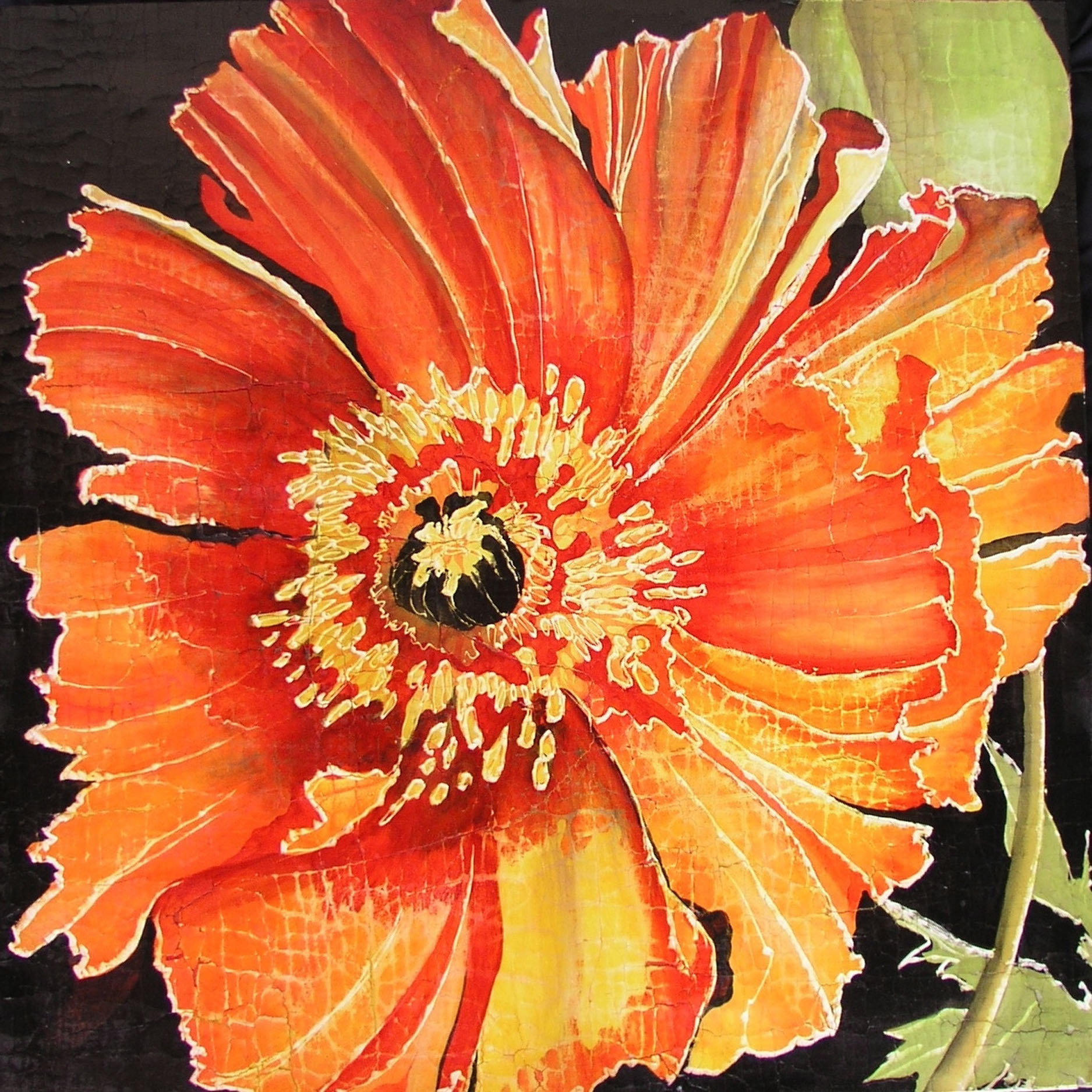 Frilly Orange Poppy