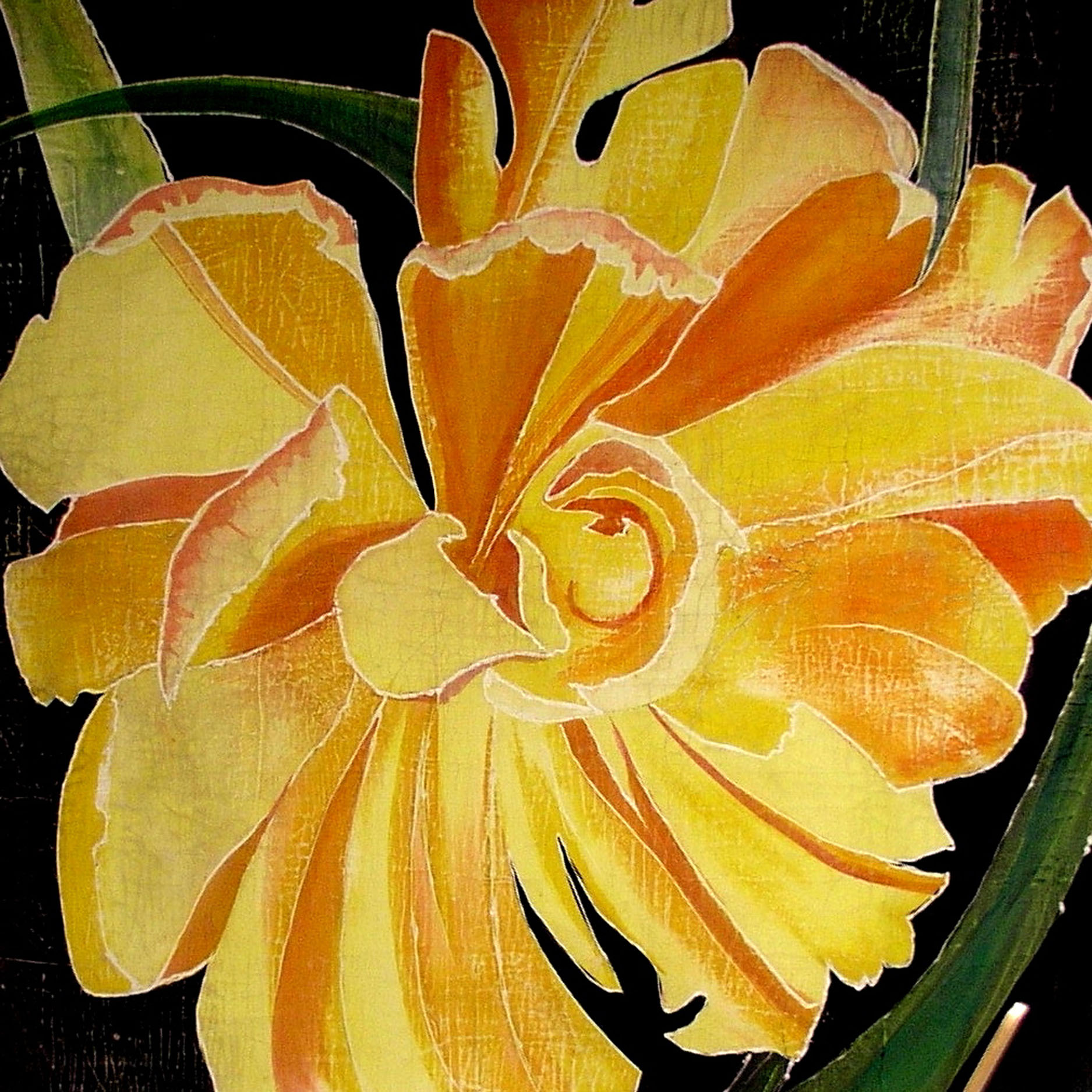 Frilly Yellow Tulip