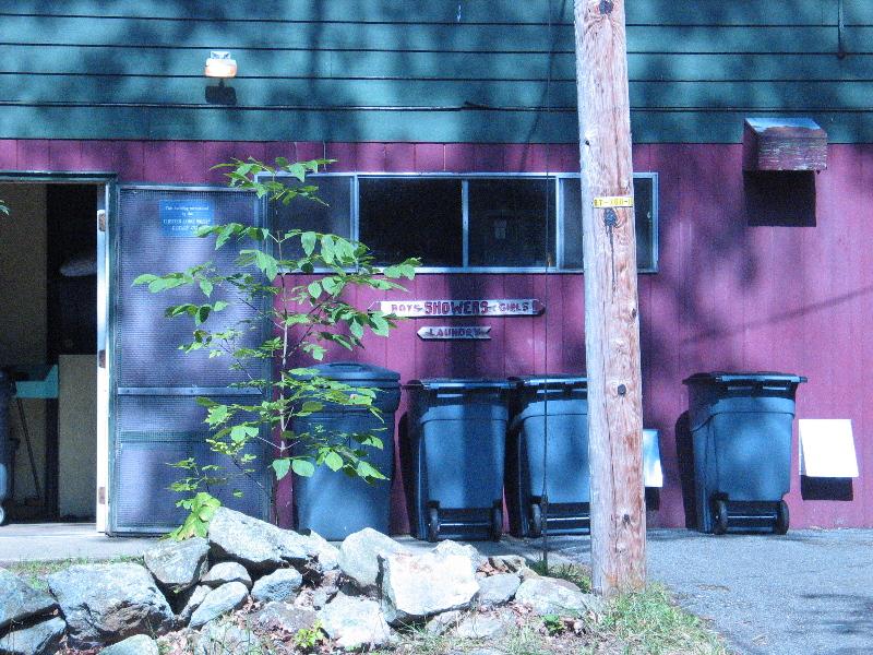 2008_Camp_Merry_Heart_Day___32_.jpg
