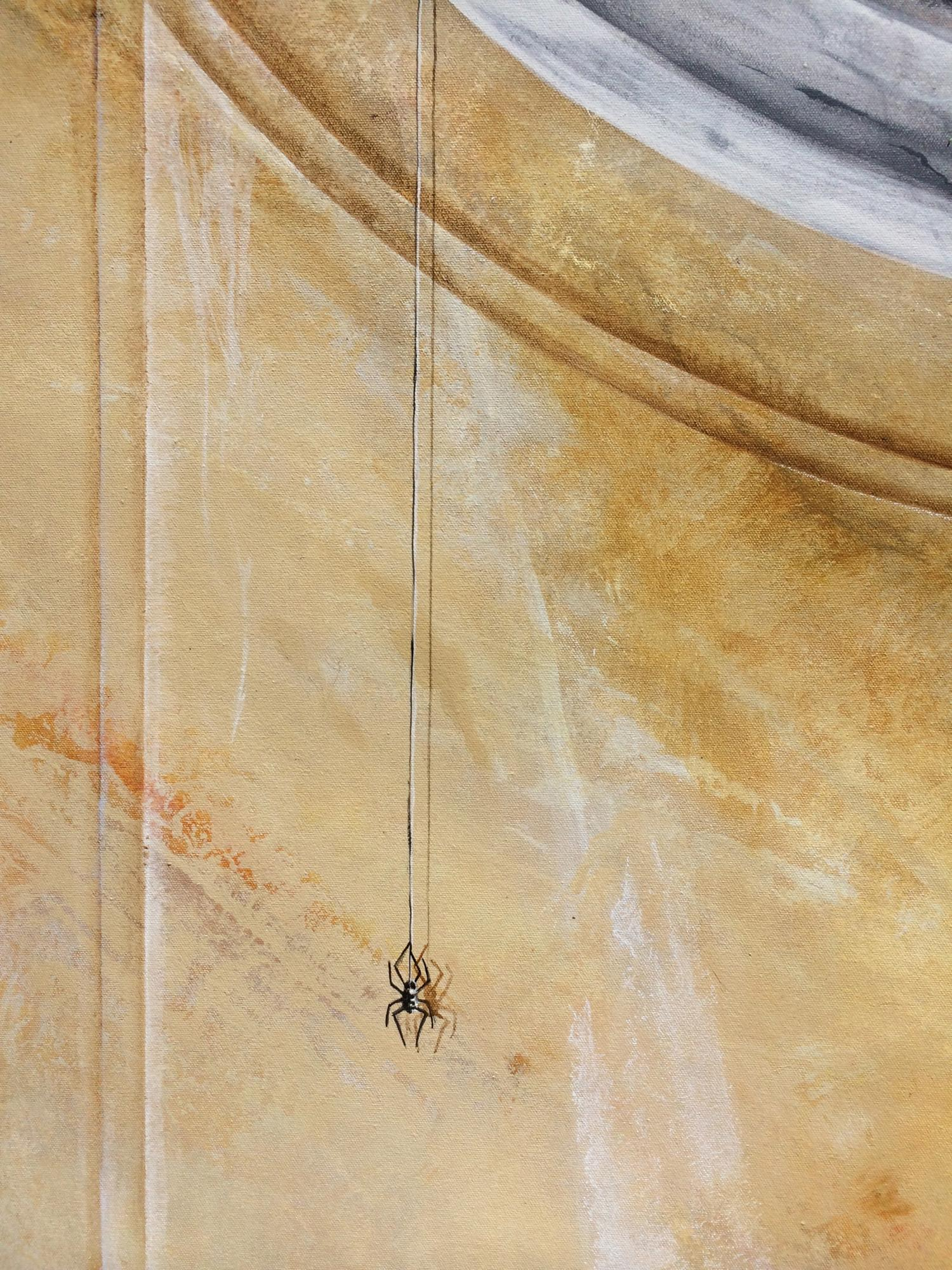 Spider on Faux Marble Trompe Loiel