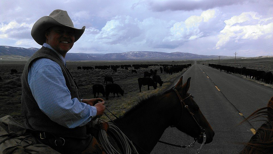 Owner Ed on a Cattle Drive