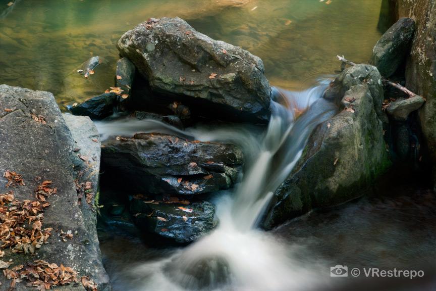 VRestrepo_New_River_Gorge_07.jpg
