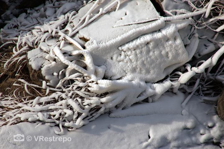 V_Restrepo_ice_Potomac_15.jpg