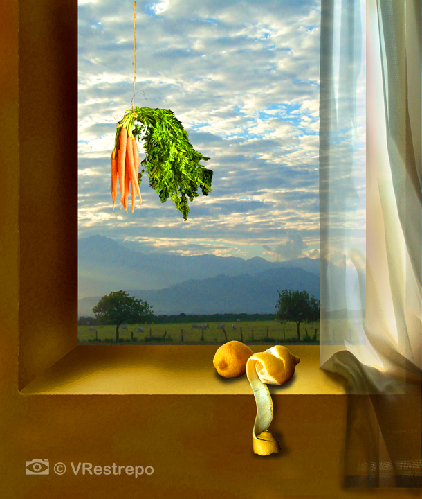 Still life with Carrots and Lemons in a Window